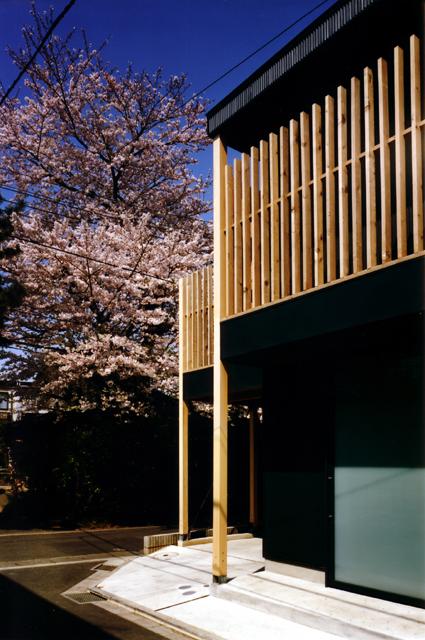 桜を見る家 南側外観